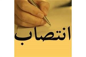دو انتصاب جدید از سوی  وزیر فرهنگ و ارشاد اسلامی