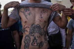 ماشاالله دراز دستگیر شد