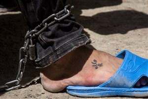 عربده کشان تهرانپارس دستگیر شدند