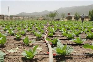 منابع آب کشاورزی در چهارمحال و بختیاری کاهش یافت