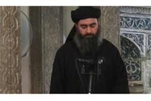 عراق: بغدادی در سوریه است