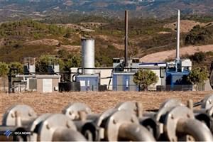 نیروگاه زیست توده چیست؟