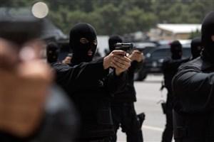علت حضور نیروهای پلیس در اطراف حرم عبدالعظیم (ع)
