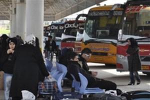 12 هزار اتوبوس برای بازگشت زائران اربعین در نظر گرفته شد/ قیمت بلیت 10 درصد کاهش یافت
