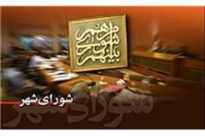 عصبانیت شورایی ها از نطق نیم ساعته میر لوحی