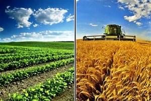 بارندگیها حال و روز کشاورزی را خوب کرد
