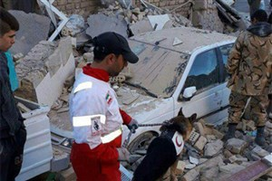 همراه اولیها در مناطق زلزله زده مشکل خاصی ندارند/ تا پایان امروز مشکلات موجود برطرف خواهد شد