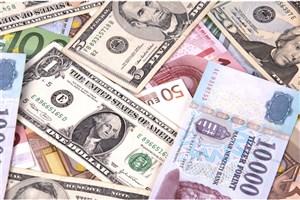 دولت نباید نرخ ارز را به اجبار ثابت نگه دارد