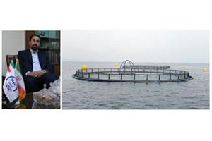 تجاری سازی 10 مجموعه تور پرورش ماهی در قفس توسط جهاددانشگاهی واحد دانشگاه صنعتی امیرکبیر