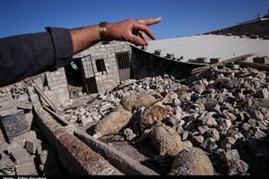 کمبود غذا و چادر در مناطق زلزله زده/ مردم به زلزله زده ها کمک می کنند
