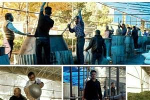 توزیع ۴۴ تن آش نذری در شیراز