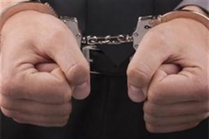 اعتراف سارقان به بیش از ۶۰۰ فقره سرقت لوازم داخل خودرو