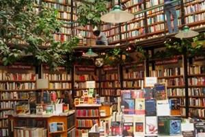 انتشار 581 رمان در سال ادبی  فرانسه