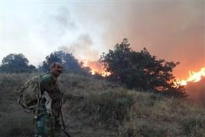جزییات آتشسوزی پارک ملی گلستان و میزان خسارتهای وارده