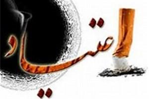 مدیرکل پیشگیری ستاد مبارزه با مواد مخدر: استفاده از ظرفیت هنرمندان کشور برای پیشگیری از اعتیاد