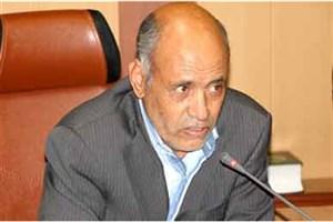 توضیحات رئیس کمیسیون خدمات شهری کرمان درباره دلیل قطع درختان بلوار جمهوری