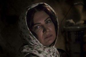 «زنانی که با گرگها دویده اند» فرم جشنواره فیلم فجر را پرکرد