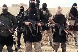 یکی از رهبران کلیدی القاعده کشته شد