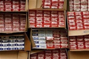۵۵ هزار نخ سیگار قاچاق در قائمشهر کشف شد
