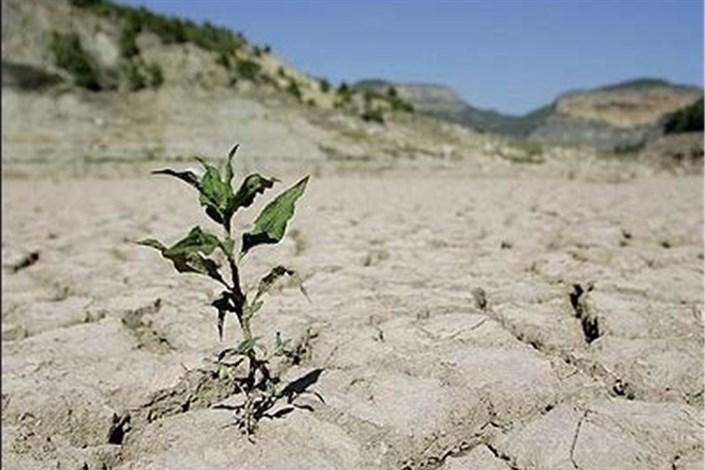 مشکل تامین غذا در ایران به دلیل خشکسالی
