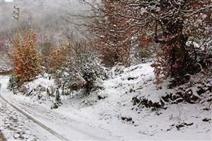 بیشتر جادههای روستایی مشگینشهر و خلخال مسدود است