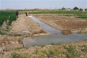 مناطق روستایی از پرداخت عوارض معاملات زمین معاف شدند