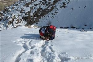 ادامه جست و جوها برای یافتن کوهنوردی دیگر در اشترانکوه