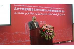 کرسی زبان فارسی نماد اتصال فرهنگی دو کشور  است