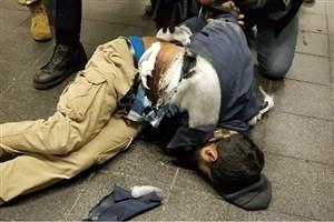 عامل انفجار منهتن تحت تاثیر داعش بوده است