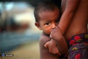 کشته شدن بیش از ۶۷۰۰ مسلمان روهینجیایی در ماه اول درگیری های میانمار