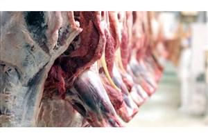 کشف ۴۵۰ کیلوگرم گوشت خرس، گراز وحشی، الاغ در چند فروشگاه در جنوب تهران
