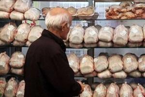 احتمال گرانی مرغ در شب یلدا / کاهش قیمت تخم مرغ در گرو واردات