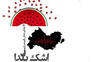 نمایشگاه خیابانی «اشک یلدا» در کرمانشاه برپا میشود