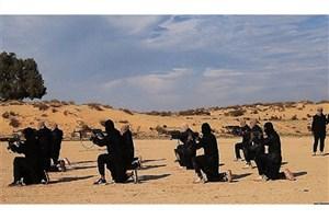 افشای مسیر ترانزیت داعش از سوریه به مصر