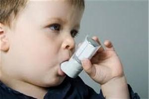 معرفی غذاهایی که برای بیماران مبتلا به آسم مفید است