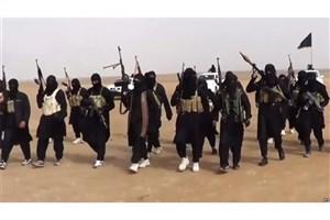 حضور بیش از 10 هزار تروریست داعشی در افغانستان