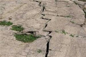 9 درصد مساحت تهران روی گسل زلزله است/ ساختمان وزارت نفت باید جابجا شود