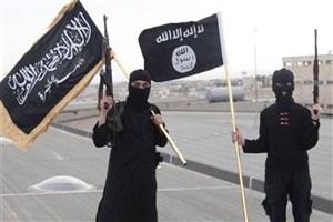 احیای استراتژی القاعده درمورد ترور توسط داعش