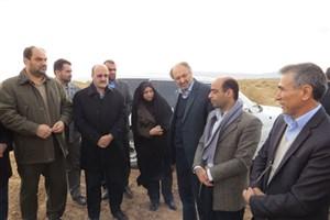 بازدید استاندار قزوین از اجرای طرح بیابانزایی