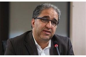 جشنواره فیروزه باعث ترغیب مردم به تولیدات فرهنگی است