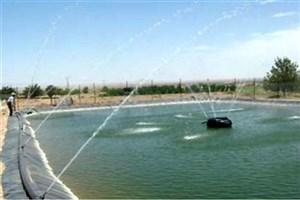 ساخت دستگاه هوشمند غذادهی به آبزیان در دانشگاه آزاد اسلامی دزفول