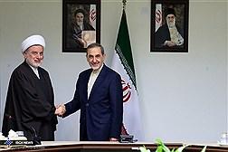 Dr. Velayati Meets Iraqi Parliament Speaker / In Photos