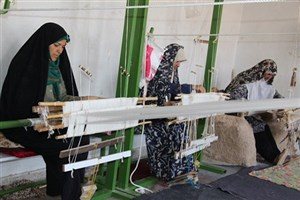 ۶۲ درصد اشتغال ایجادشده در مناطق روستایی زنجان است