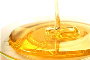 Shahr-e Kord IAU Researchers Investigate the Effects of Honey & SNPs on Kidney Stone Prevention