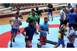 برگزاری اردوی تیم ملی کشتی فرنگی