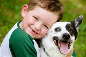 نگهداری ازحیوانات خانگی درحال تبدیل شدن به آسیب اجتماعی و تجمل گرایی است/حیوانات خانگی یک فرزند بی دردسر!
