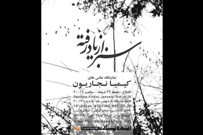 «سبز از یاد رفته» در گالری ایده پارسی افتتاح می شود