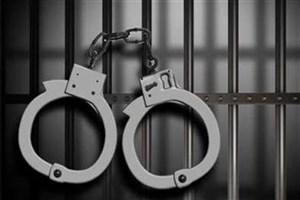 کیف قاپان خانی آباد نو دستگیر شدند