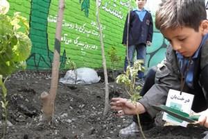 40 مدرسه طبیعت در کشور فعالیت می کند