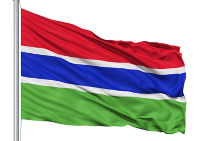 نایب رییس مجلس گامبیا: ما باید صدای ملت های خود باشیم